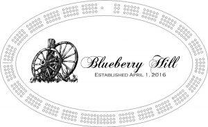 blueberry-hill-final