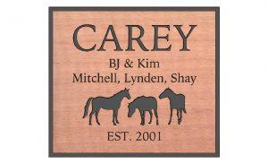 carey-copy